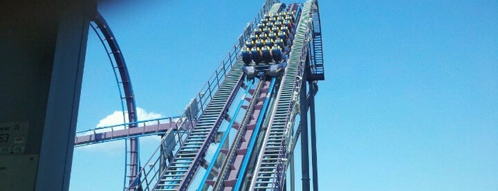 Batman The Dark Knight is one of ROLLER COASTERS.