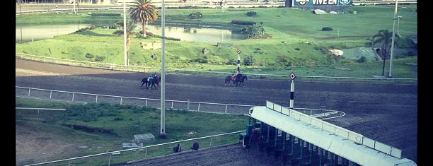 Hipódromo de las Américas is one of My favorites places.