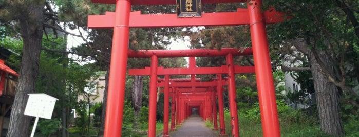 Sapporo Fushimi Inari Shrine is one of Sapporo.