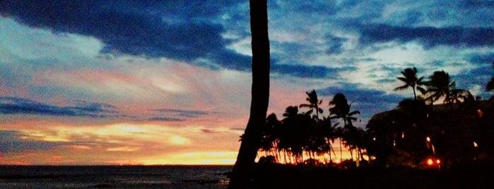 Hilton is one of My Big Island.