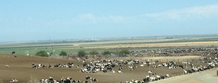 Harris Ranch Cattle Yards is one of stuff to fix.