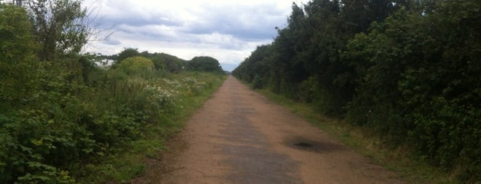 The Greenway is one of Tired of London, Tired of Life (Jan-Jun).