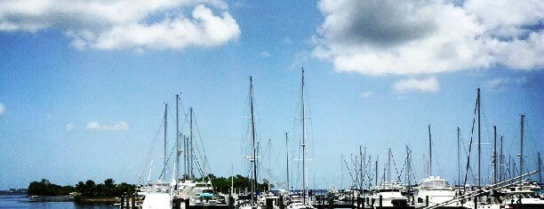 Coconut grove Marina is one of Miami.