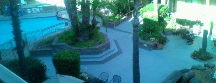 Best Western Plus Meridian Inn & Suites, Anaheim-Orange is one of Scott: сохраненные места.