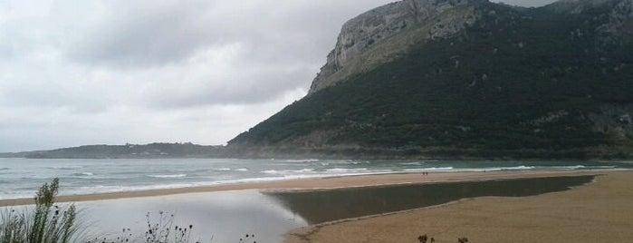 Playa Oriñon is one of Lugares de Kenzo.