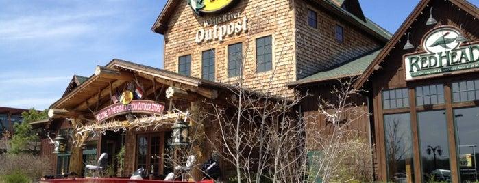 Bass Pro Shops is one of สถานที่ที่ Leslie ถูกใจ.