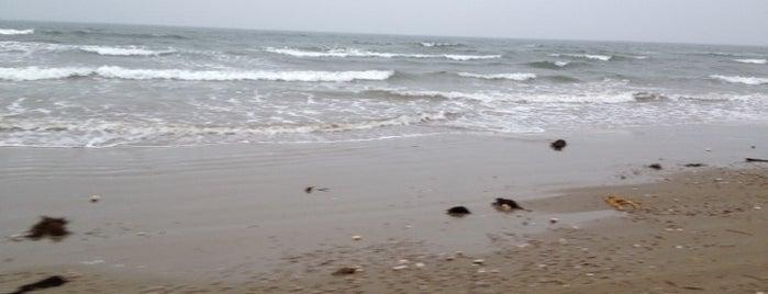 千里浜 is one of 日本の渚百選.