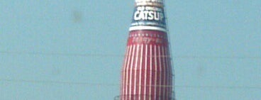 World's Largest Catsup Bottle is one of JB 님이 저장한 장소.