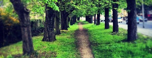 Ealing Common is one of Orte, die Fulya gefallen.