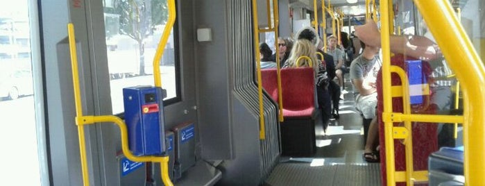 Adelaide To Glenelg Tram is one of Around The World: SW Pacific.