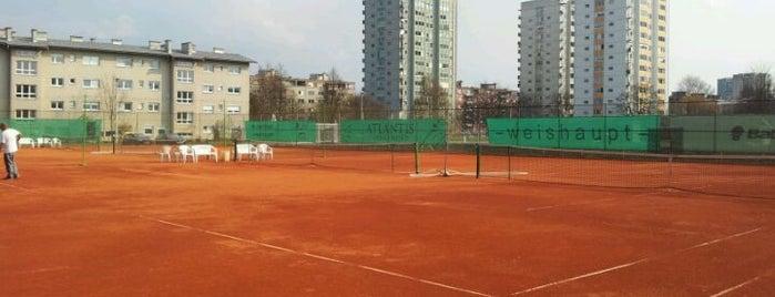 Športni park Savsko naselje is one of Lugares favoritos de Ajda.