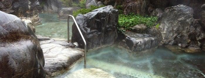 温泉センター 天領 is one of 訪れた温泉施設.