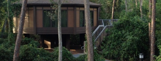 Treehouse Villas at Saratoga Springs Resort is one of Orte, die Naked gefallen.