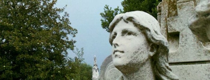 Oakland Cemetery is one of The Atlanta I Know and Love, By an Atlanta Native.