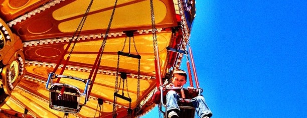 Lynn's Trapeze is one of Top Picks for having Fun in Coney Island.