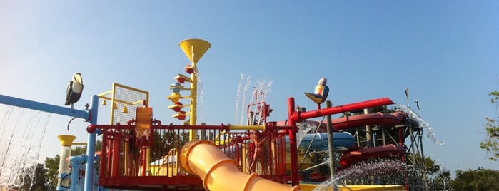 Beech Bend Park is one of BGKY List of Places to See.