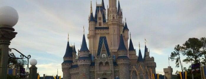 Cinderella Castle is one of My vacation @Orlando.