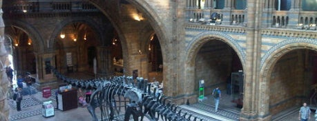 Natural History Museum is one of Best Things To Do In London.