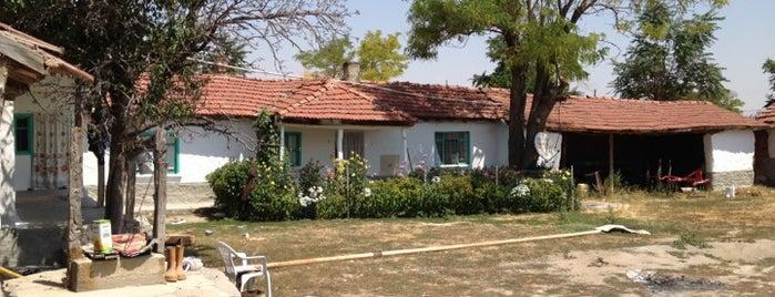 Yıldızören is one of Çifteler ve Köyleri.