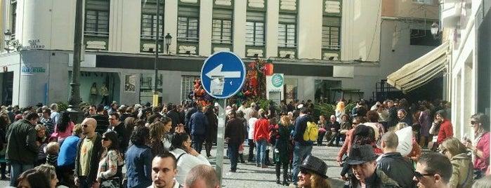 Plaza Del Palillero is one of cadiz.