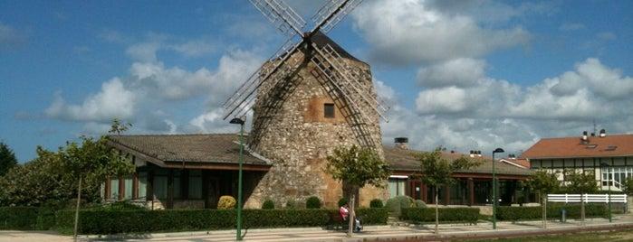 Mirador de Arrigúnaga is one of Lugares favoritos de Diego.