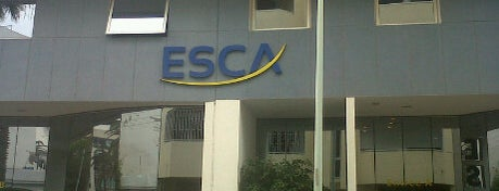 Esca is one of GST II.