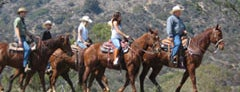 Sunset Ranch Hollywood Stables is one of Vanity Fair Agenda's Social L.A..
