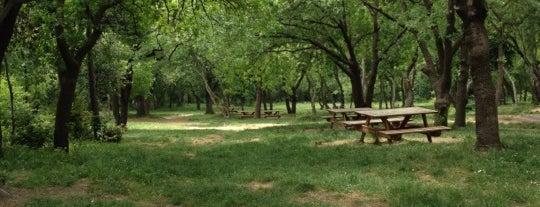 Yıldız Parkı is one of alev.