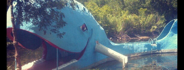 Blue Whale is one of Tulsa Metro Area To Do.