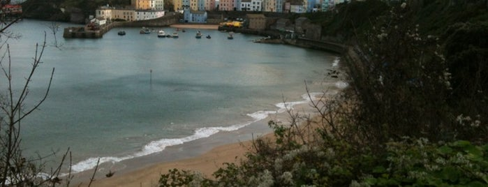 Tenby Beach is one of Lieux qui ont plu à Carl.