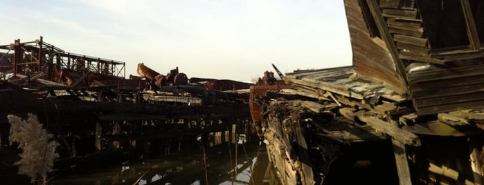 Staten Island Tugboat Graveyard is one of Adult Camp!.