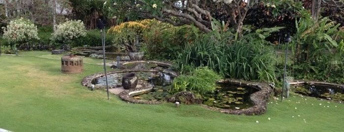 Plantation Gardens is one of Kauai.