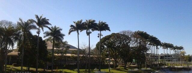 Praia Clube is one of Locais curtidos por Guilherme.