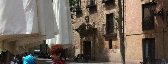 Vinodiario is one of Terrazas Salamanca.