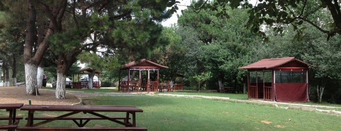 Başıbüyük Ormanı is one of สถานที่ที่ Birol ถูกใจ.
