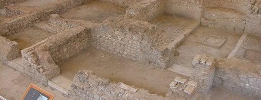 Yacimiento Arqueológico Fuente Alamo is one of Que visitar en la provincia de cordoba.
