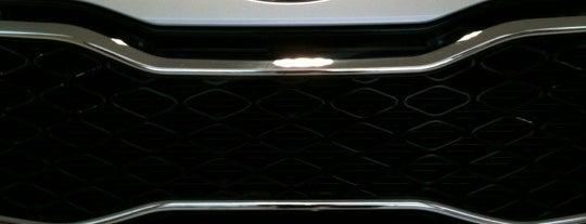 Kia Motors Stern is one of Dealers.