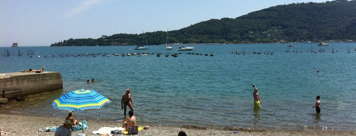 Spiaggia l'Olivo is one of Portovenere.