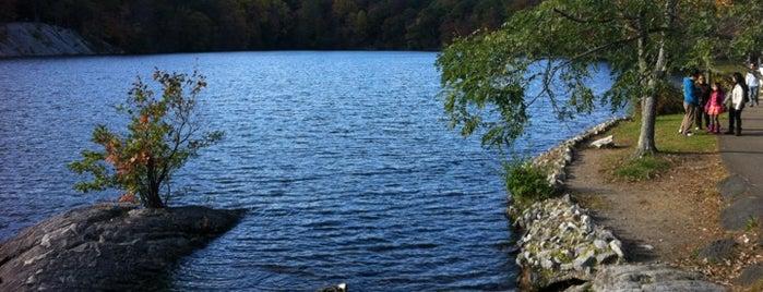 Hessian Lake is one of Sunday Funday.