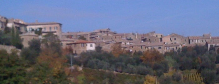Montalcino is one of Around Tuscany.