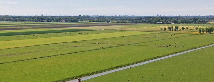 Droogmakerij de Beemster | Beemster Polder is one of Dutch World Heritage sites.