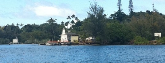 Coconut island is one of Oahu: The Gathering Place.