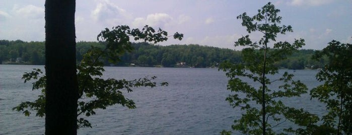 Tuscarora Lake is one of New York New York.