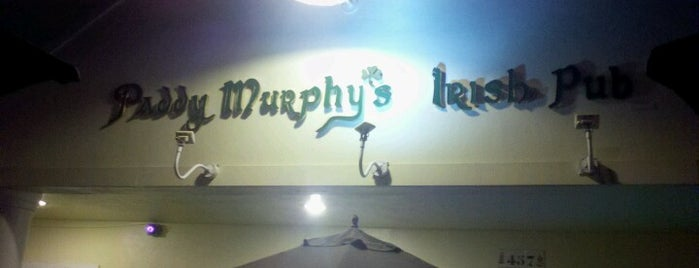Paddy Murphy's Irish Pub is one of Orte, die Jan gefallen.