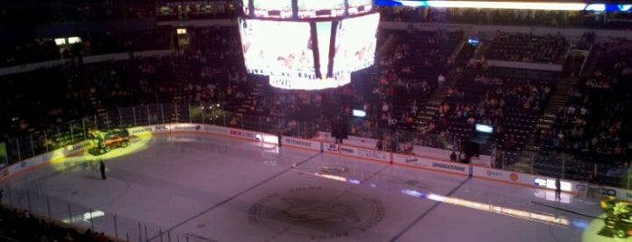 Bridgestone Arena is one of NHL HOCKEY ARENAS.