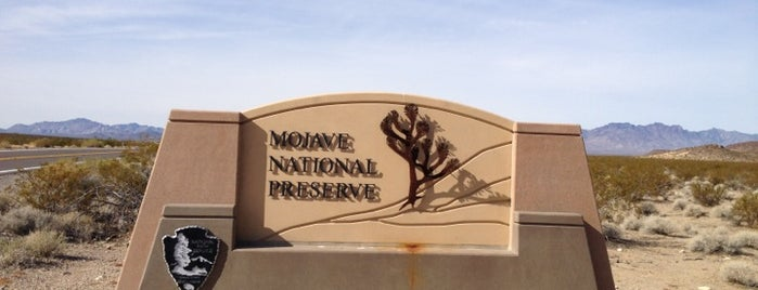 Mojave National Preserve is one of Historic Route 66.