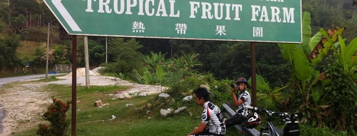 Tropical Fruit Farm is one of Penang.