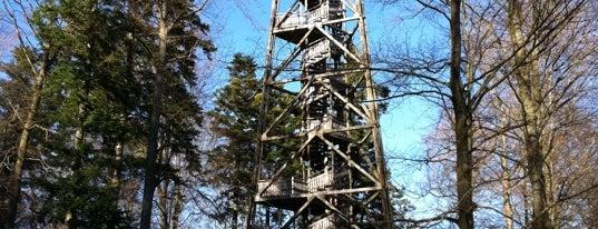 Loorenkopf is one of สถานที่ที่ Antonia ถูกใจ.