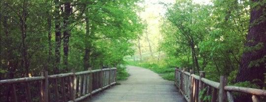 Cherokee Park is one of Louisville.