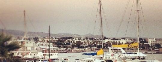 Paphos Harbour is one of Lugares favoritos de Nina.